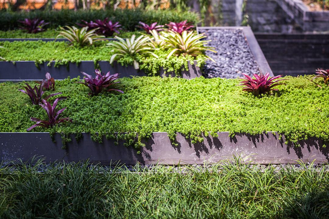 泰国某公寓公共花园Mode 61  Shma (4)