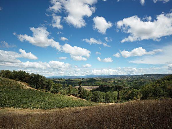 意大利,佛罗伦萨 ,安东尼世家酒庄  Archea Associati2 (11)