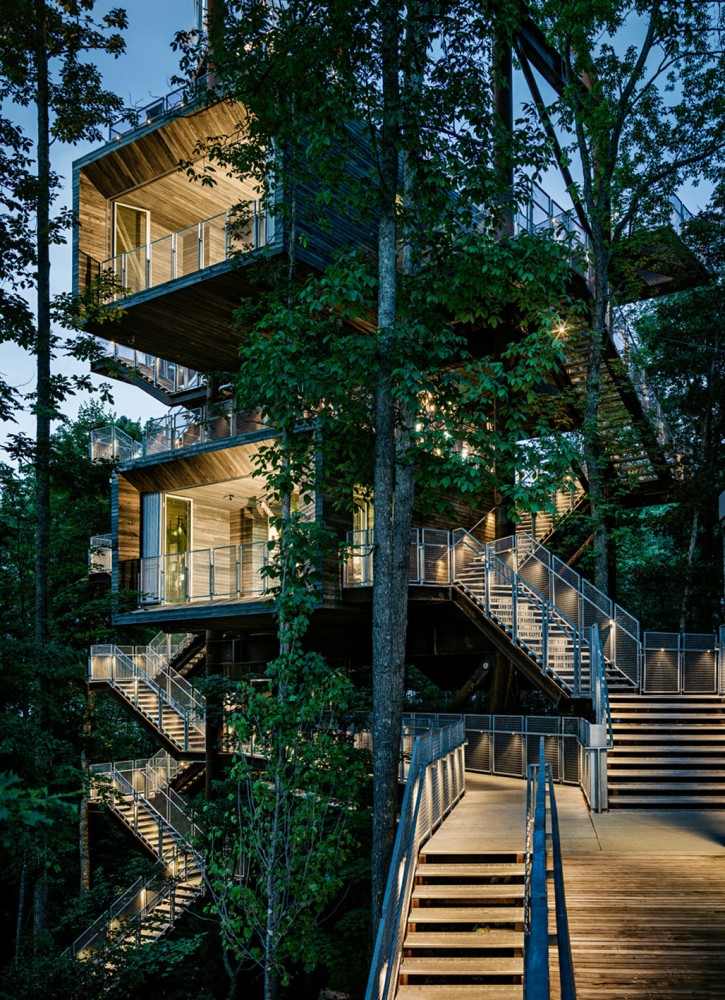 美国弗吉尼亚州的可持续树屋 (3)