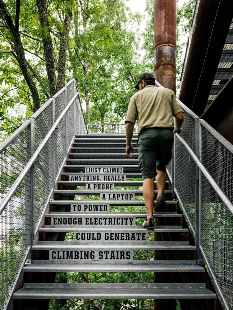 美国弗吉尼亚州的可持续树屋 (9)