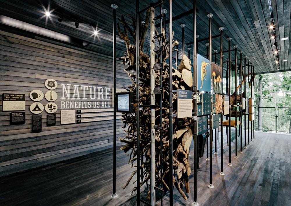 美国弗吉尼亚州的可持续树屋 (10)