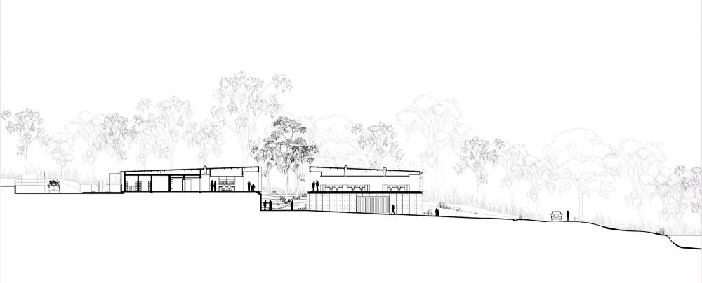 澳大利亚植物银行australian plant bank bvn donovan hillBVN Donovan Hill (1)